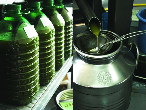 Malta's olive oil bottled to go