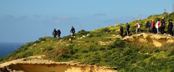 Birdlife Gozo Nature Walk 11 October